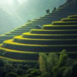Que prendre en voyage en Asie